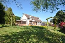 4 bed house for sale in Ivy House, Crimchard...
