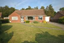 2 bed Bungalow in Monmouth Court, Chard...