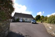 Bungalow for sale in Touchstone Lane, Chard...
