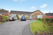 3 bed Bungalow for sale in Monmouth Court, Chard...