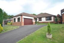 Bungalow for sale in Woodcock Way, Chardstock...
