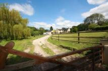 5 bed home in Lydmarsh, Chard, Somerset