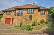 Bungalow for sale in Highfield, Ilminster...