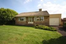 2 bed Bungalow for sale in Horton, Ilminster...