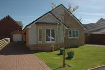 Detached Bungalow for sale in Fernlea Avenue...