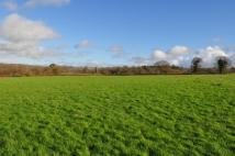 Chard Junction Land for sale