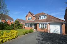 Detached property in Deer Park Drive, Newport