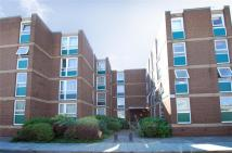 Vanbrugh Court Studio flat to rent