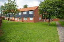 2 bed Apartment in Elmwood Court...