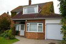 4 bed Detached home to rent in Connaught Road...