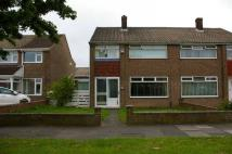 property to rent in Tunstall Avenue, Billingham,