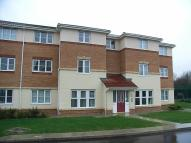 2220954 - 30 Carlake Grove Flat to rent