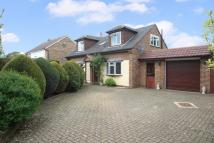 3 bedroom Detached Bungalow for sale in Church Lane, Bisley...
