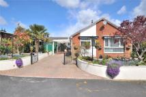 Bungalow for sale in Cosway Road, Tiverton...