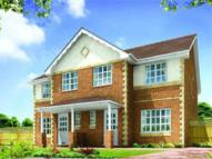 3 bed semi detached home in Plot 26 Parc Morfa...