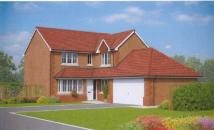Detached house for sale in Bronwylfa Nurseries...