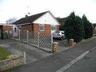 Semi-Detached Bungalow to rent in 55 Stancliffe Avenue...