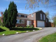 Wales Orchard Detached house for sale