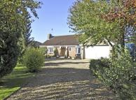 Detached Bungalow for sale in Tanners Lane, Corby Glen...
