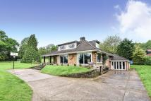 Knowle Lane Detached house for sale