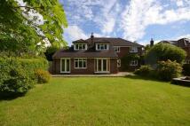 6 bed Detached house in Chapel Lane, Lyndhurst