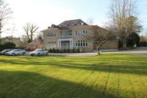 property to rent in Elmwood court, Roundhay