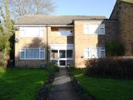 Maisonette to rent in Red Road, Borehamwood...