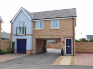 Detached property to rent in Upper Cambourne...