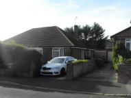 2 bed Semi-Detached Bungalow in Springfield Close...