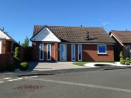 **NO CHAIN** Hensley Court Detached Bungalow for sale