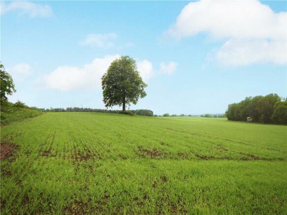 Lot 2 - Berwickshire