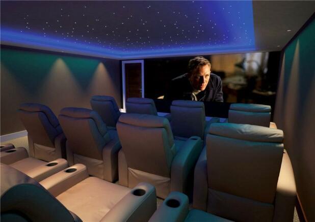 12 Seater Cinema Rm