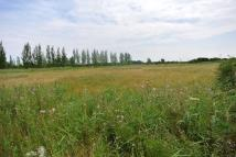 Land for sale in Ash Road, Sandwich