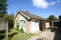 Detached Bungalow for sale in Avenue Road, Cranleigh...