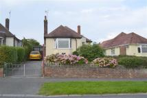 2 bedroom Detached Bungalow for sale in Maes Y Castell, Llanrhos...