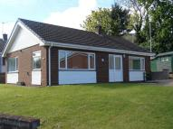 Bungalow to rent in 16 Nant y Glyn...