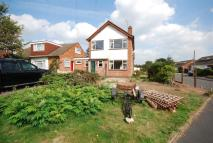 Detached property to rent in Thirlmere Road...