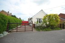 2 bed Bungalow to rent in John Avenue, Mountsorrel