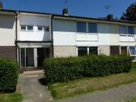 Terraced property to rent in Lamb Close, Hatfield