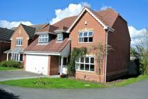 Detached property for sale in Braeburn Close...