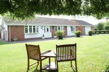 2 bed Detached Bungalow in Brookfield Road...
