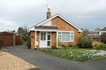 Detached Bungalow in Sussex Gardens...