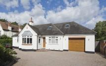Detached Bungalow in 91 Belbroughton Road...
