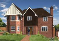 new house in Pellonia Plot 4...