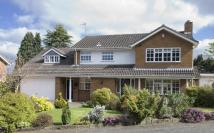 5 bedroom Detached property in 10 Thicknall Rise...