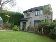 Detached property to rent in Hollinbank Lane...