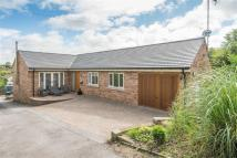 3 bed Bungalow in Hollybank...