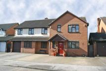 5 bed Detached house in 20 Antelope Avenue...