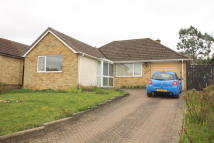 Rowallan Drive Detached Bungalow to rent