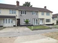 Terraced house to rent in Lavender Hill, Ipswich...